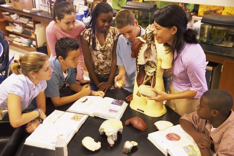 बच्चों में व्याहारिक कला का विकास social development in kids