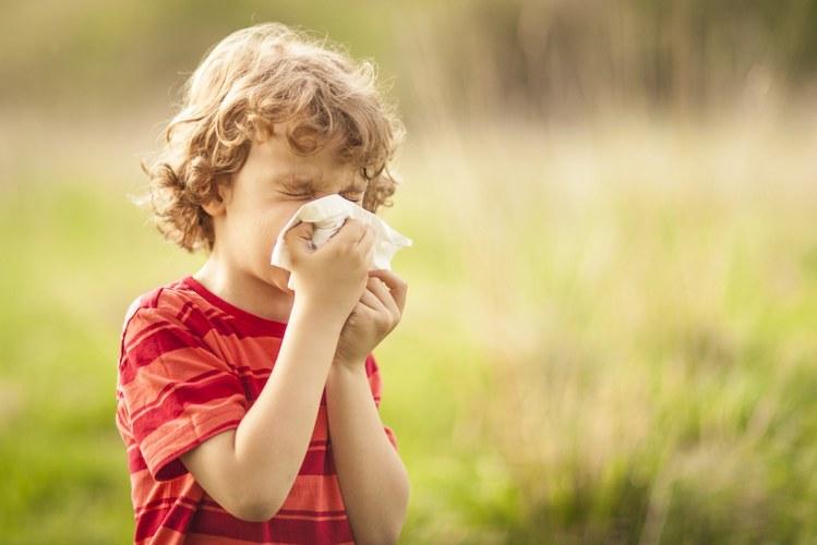 वातावरण में परागकण (pollen) से शिशु को जुकाम